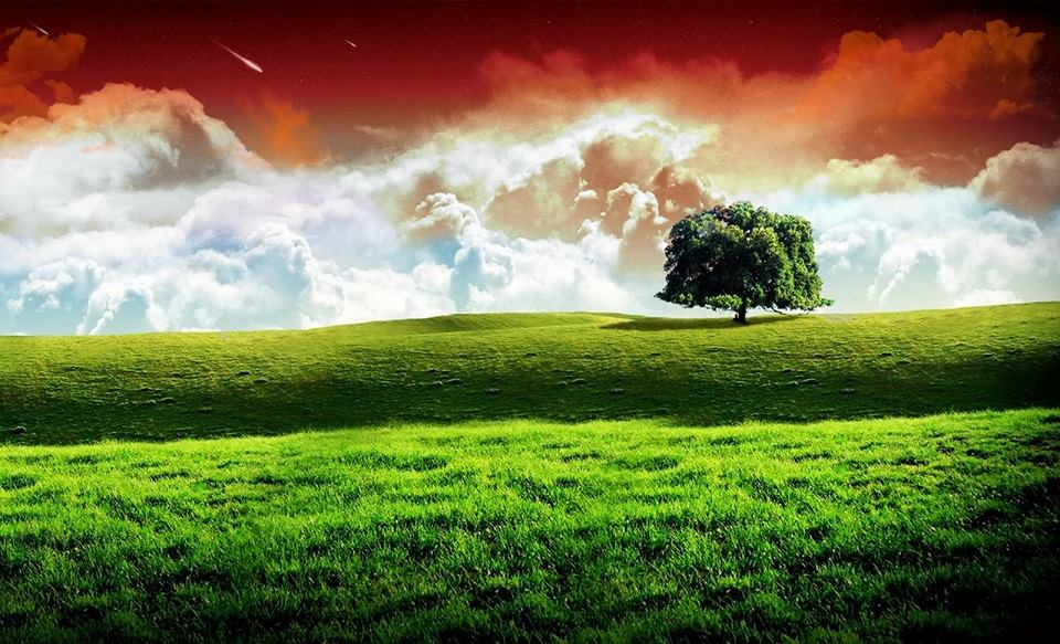 Nature Of Human Geography In Hindi