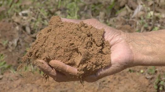Silt environmental impact rashid 39 s blog an educational for What is the origin of soil